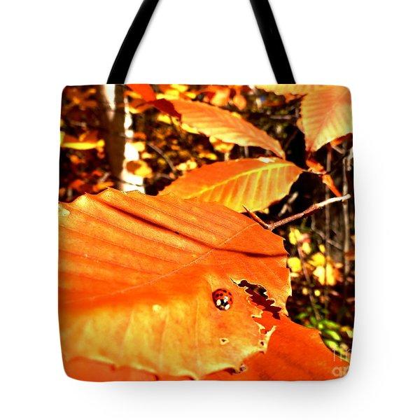 Ladybug At Fall Tote Bag