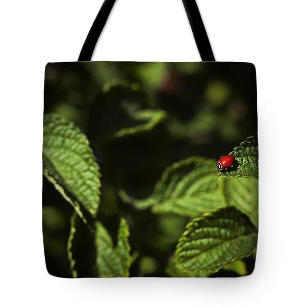 Ladybug Tote Bag by Bradley R Youngberg