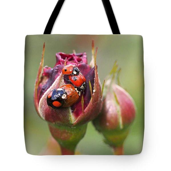 Ladybug Foursome Tote Bag
