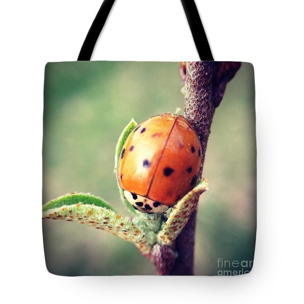 Tote Bag featuring the photograph Ladybug  by Kerri Farley