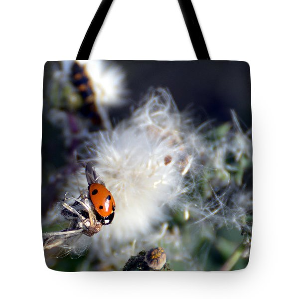 Tote Bag featuring the photograph Ladybug by Linda Cox