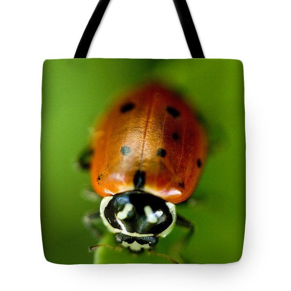 Ladybug On Green Tote Bag