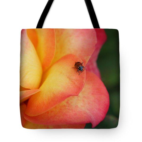 Ladybug On Rose Tote Bag
