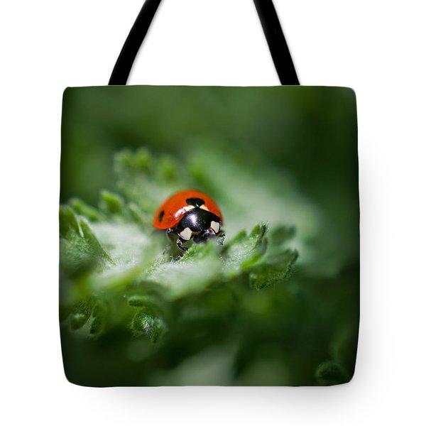 Ladybug On The Move Tote Bag