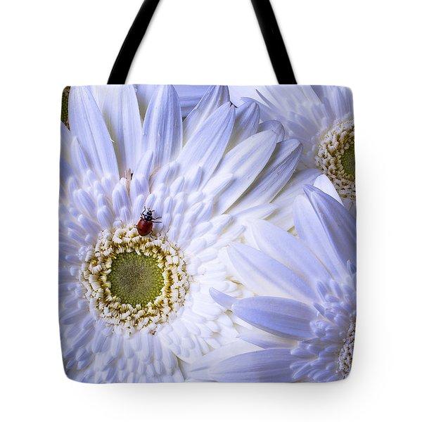 Ladybug On White Daisy Tote Bag