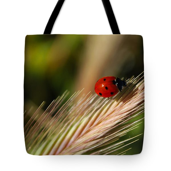 Tote Bag featuring the photograph Ladybug by Richard Stephen