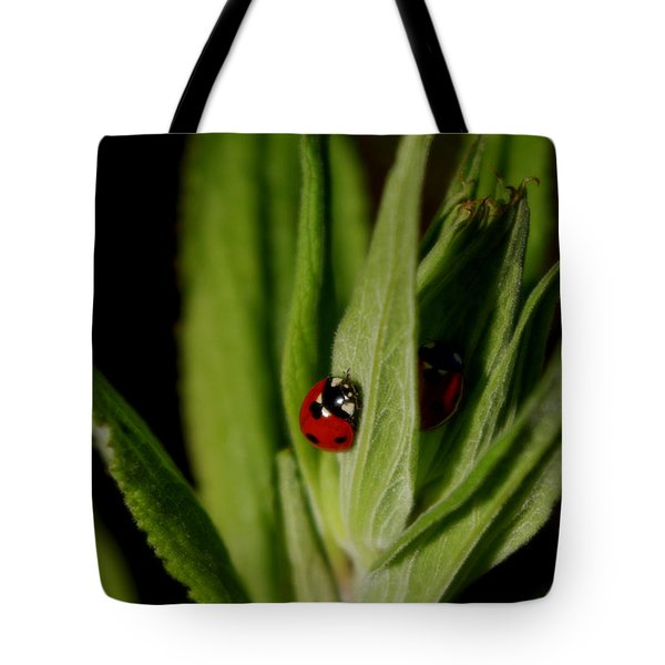 Ladybugs Tote Bag by Adria Trail