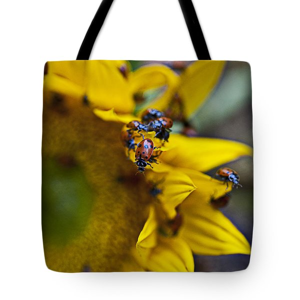 Ladybugs Close Up Tote Bag