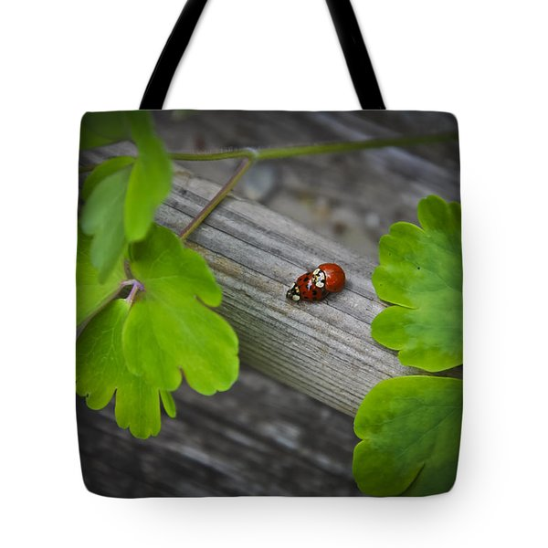 Ladybugs Mating Tote Bag
