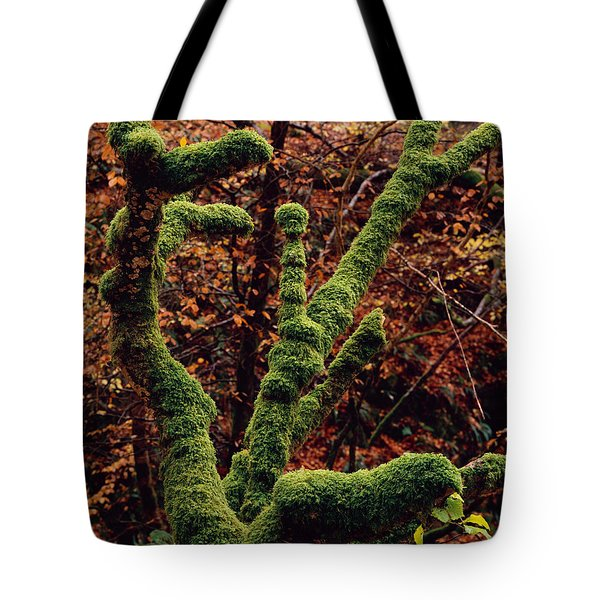 Lael Forest Garden 1 Tote Bag