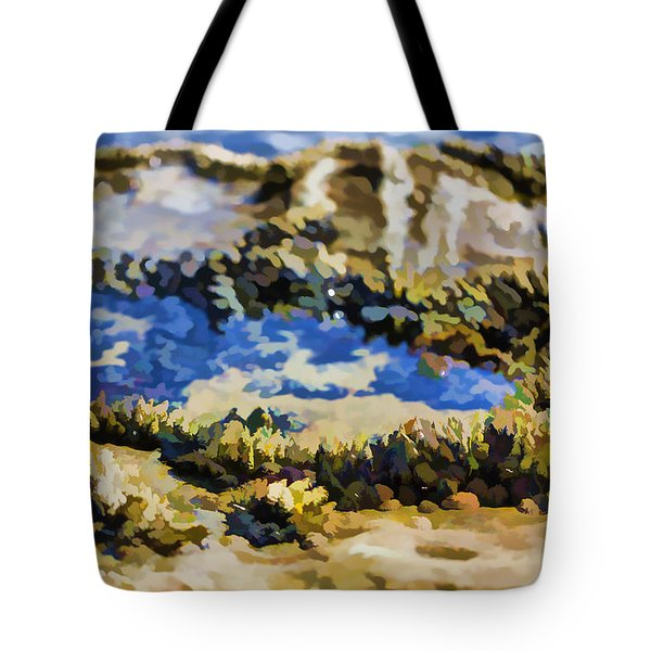 Laguna Beach Tide Pool Pattern 3 Tote Bag by Scott Campbell
