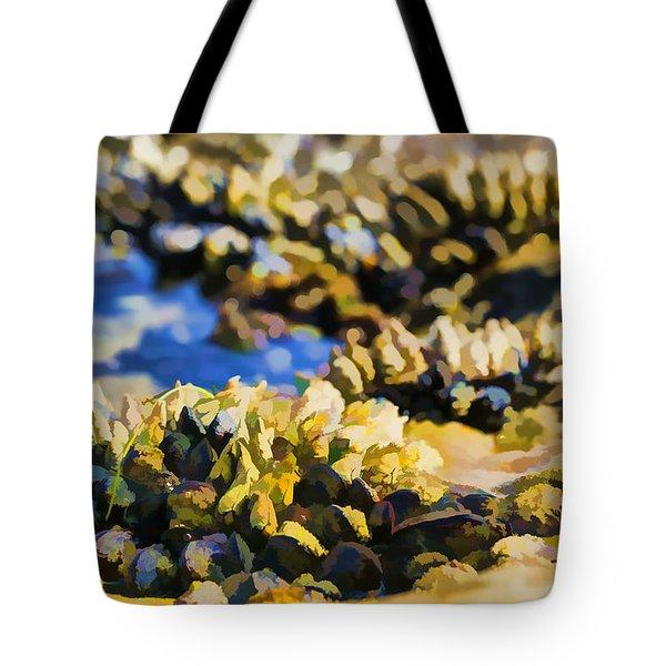 Laguna Beach Tide Pool Pattern 4 Tote Bag by Scott Campbell