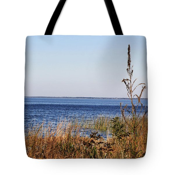 Lake Apopka 2 Tote Bag by Chris Thomas
