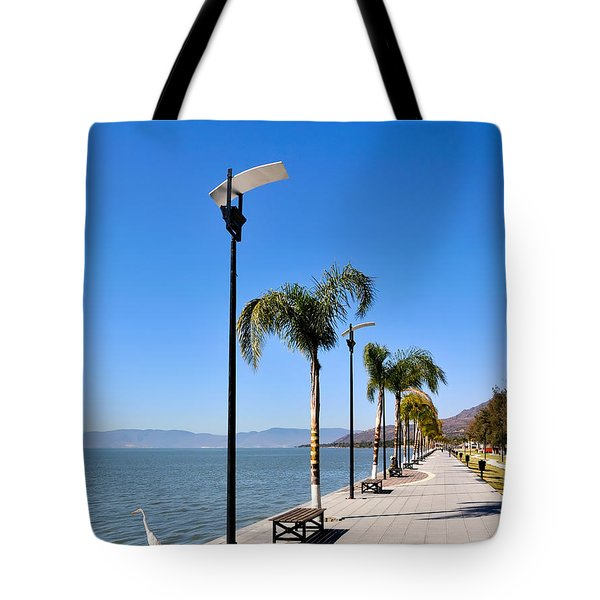 Tote Bag featuring the photograph Lake Chapala - Mexico by David Perry Lawrence