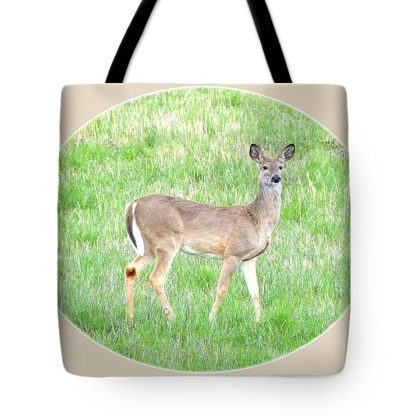 Lake Country Doe   Tote Bag by Will Borden