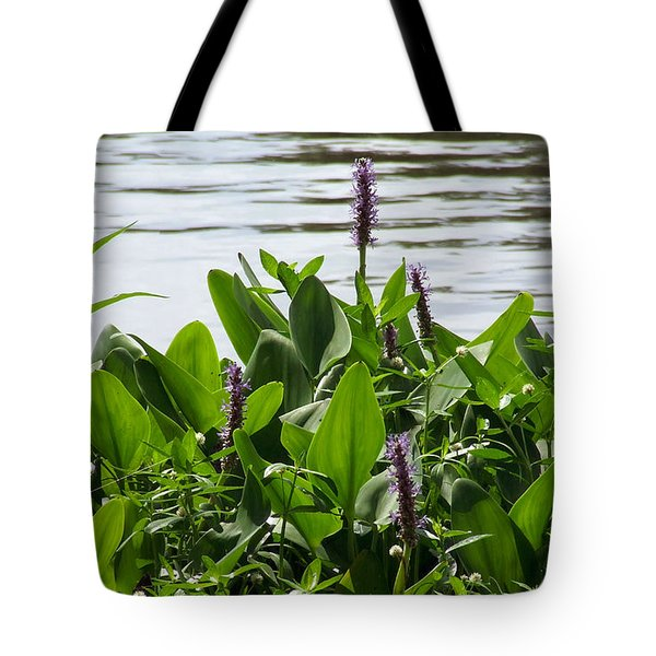 Lake Day Tote Bag by Andrea Anderegg
