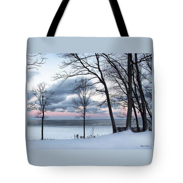 Lake Erie Sunrise Tote Bag