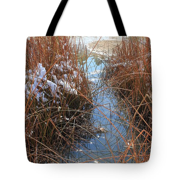 Tote Bag featuring the photograph Lake Glitter by Diane Alexander