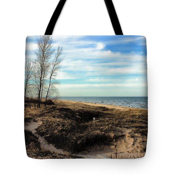 Tote Bag featuring the photograph Lake Michigan Shoreline by Lauren Radke
