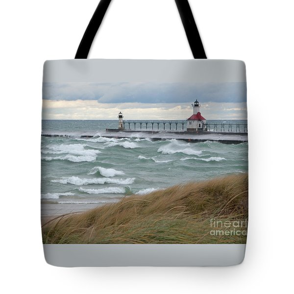 Lake Michigan Winds Tote Bag by Ann Horn