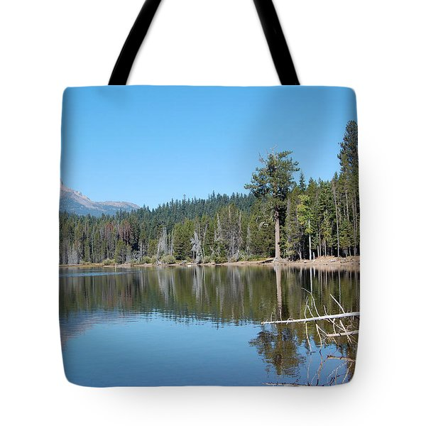 Tote Bag featuring the photograph Lake Of The Woods 4 by Debra Thompson