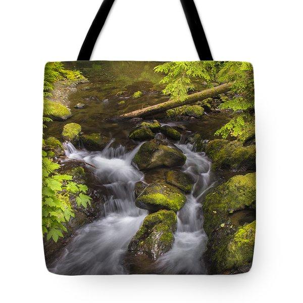 Lake Quinault Creek 2 Tote Bag