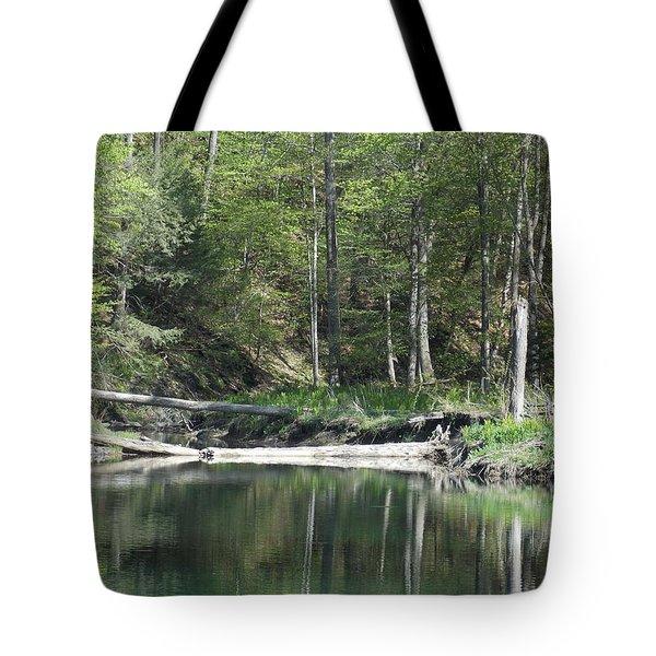Stillness Tote Bag by Catherine Gagne