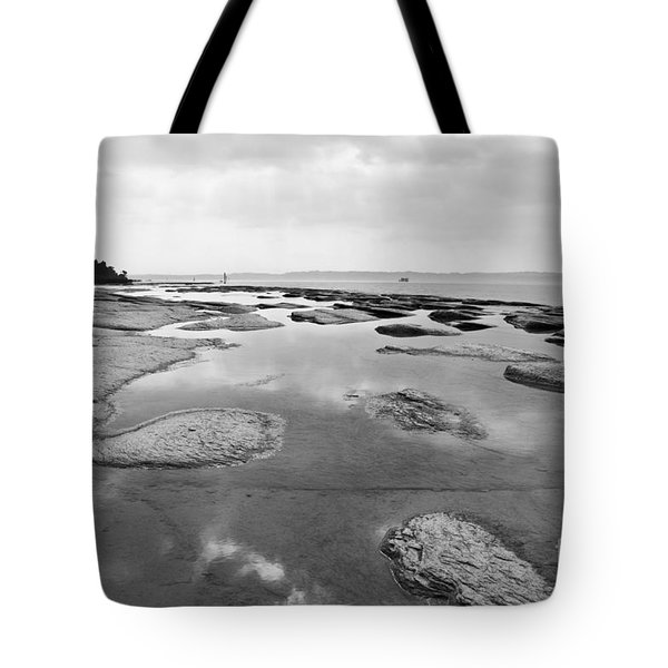 Lake Shore Tote Bag by Simona Ghidini