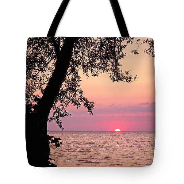 Lake Sunset Tote Bag by Aimee L Maher Photography and Art Visit ALMGallerydotcom