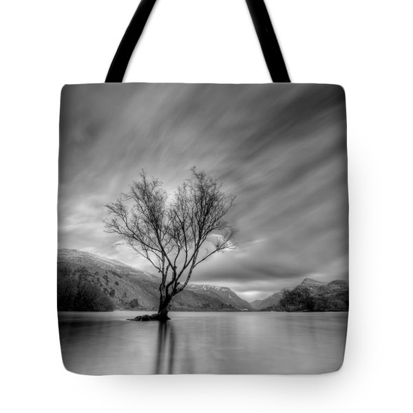 Lake Tree Mon Tote Bag