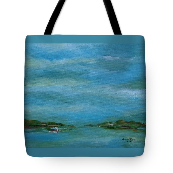 Lake Wallenpaupack Early Morning Tote Bag