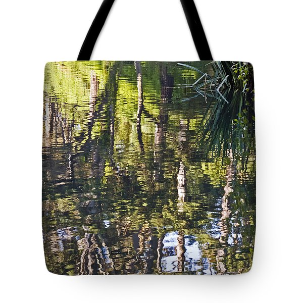 Tote Bag featuring the photograph Lakeshore Reflections by Kate Brown