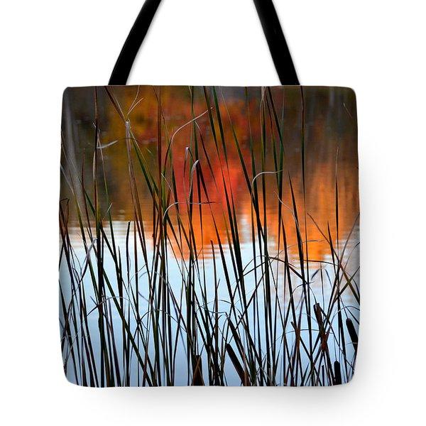 Lakeside Tales Tote Bag