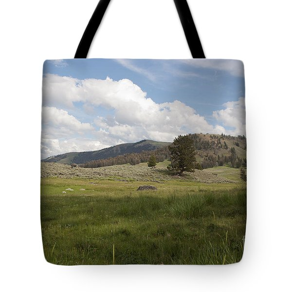 Tote Bag featuring the photograph Lamar Valley No. 2 by Belinda Greb