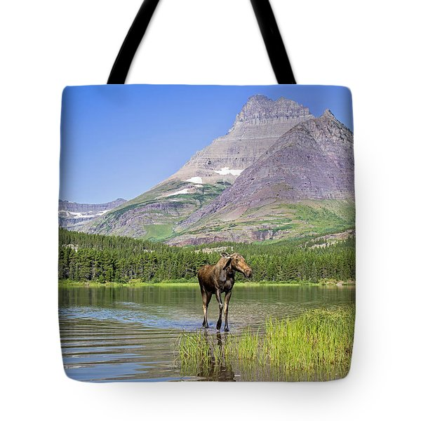 Land Of The Moose Tote Bag by Jack Bell