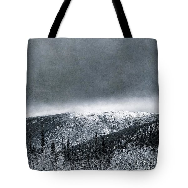 Land Shapes 3 Tote Bag by Priska Wettstein