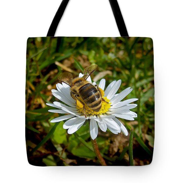 Tote Bag featuring the photograph Landed by Nina Ficur Feenan