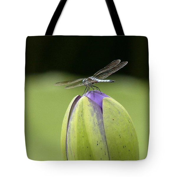 Landing Pad Tote Bag by Yvonne Wright