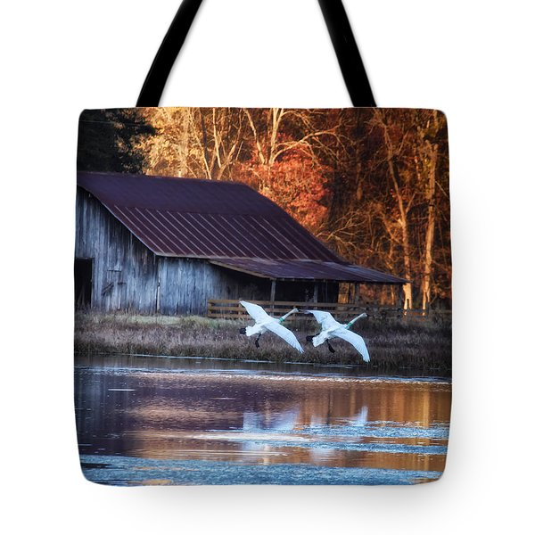 Landing Trumpeter Swans Boxley Mill Pond Tote Bag