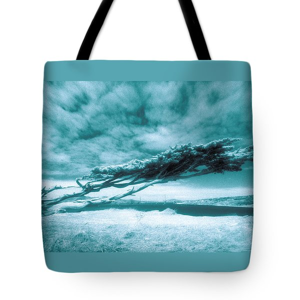 Lands End Tote Bag by Daniel Furon
