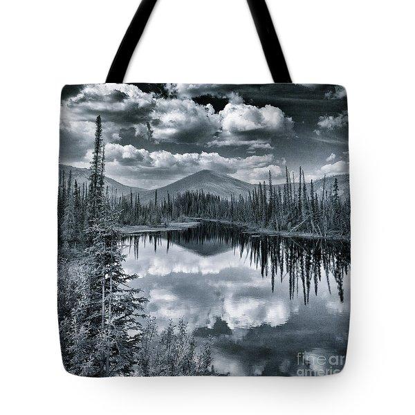 Landshapes 29 Tote Bag