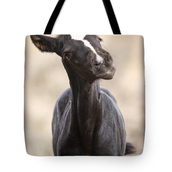 Lansa - A Wild Mustang Colt Tote Bag