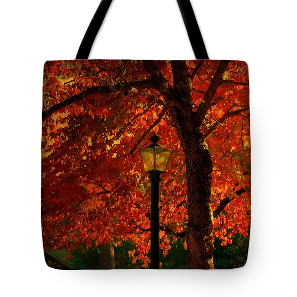 Lantern In Autumn Tote Bag