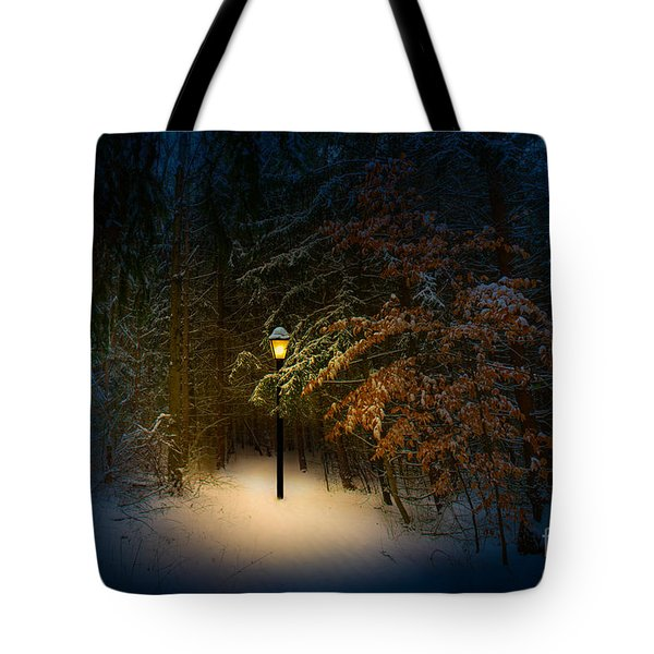 Lantern In The Wood Tote Bag