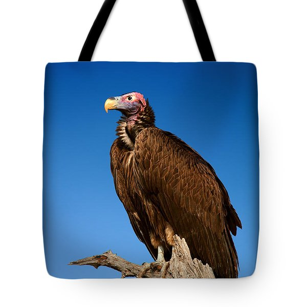 Lappetfaced Vulture Against Blue Sky Tote Bag by Johan Swanepoel