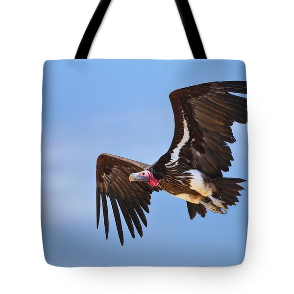 Lappetfaced Vulture Tote Bag by Johan Swanepoel
