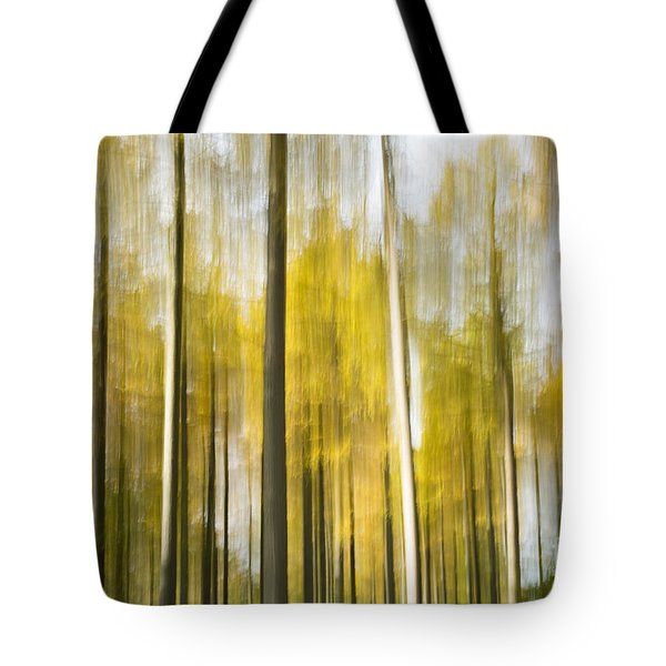 Larch Grove Blurred Tote Bag by Anne Gilbert