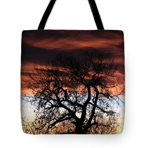 Large Cottonwood At Sunset Tote Bag