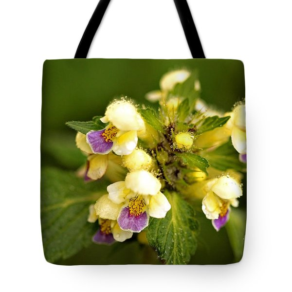 Tote Bag featuring the photograph Large Flowered Hemp-nettle by Liz  Alderdice