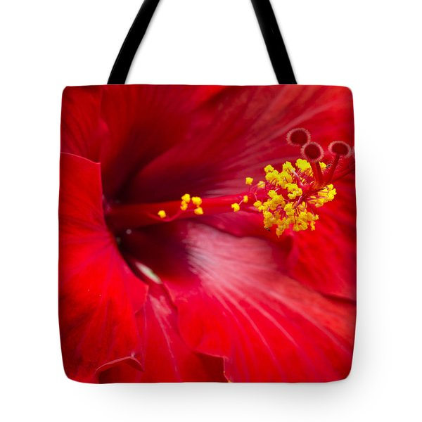 Large Red Hibiscus Tote Bag